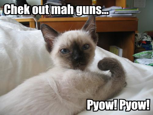 Chek-out-mah-guns-pyow-pyow